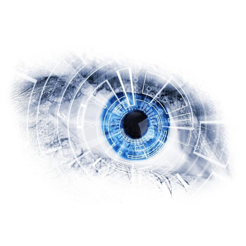Oeil de l'audit