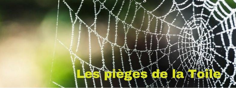 notice-web-1